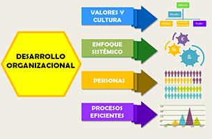 Desenvolupament Organitzacional